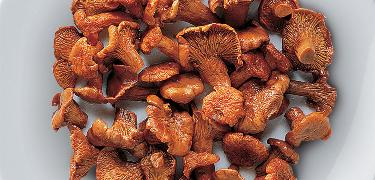 MUSHROOMS - Chanterelle in brine (COD. 08005)