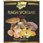 "MUSHROOMS - ""Funghi Spontanei"" Mix of wild mushrooms in oil (Code 08017)"